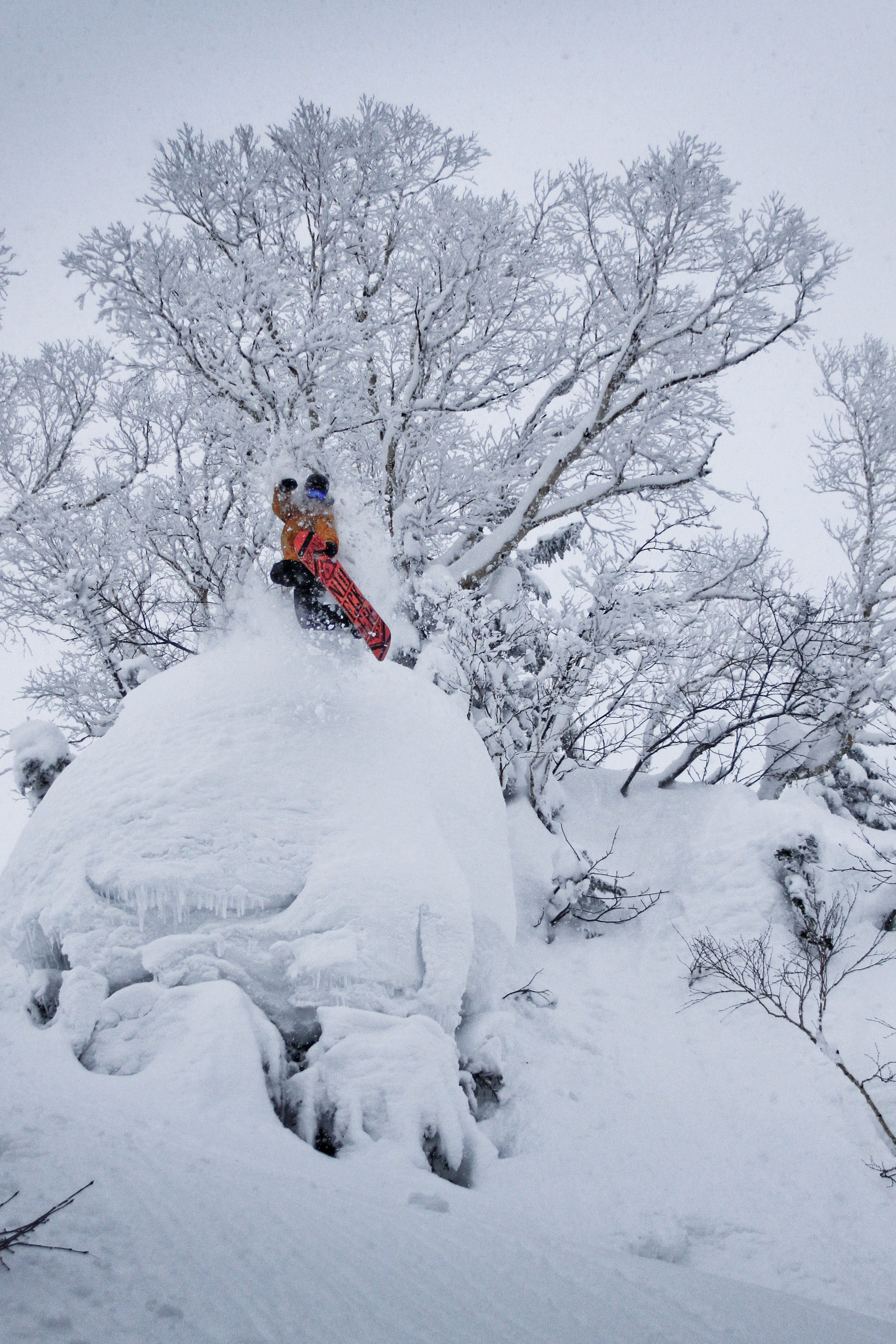 Backside Air in Japan Pow, Independent Snowboard School trip, pillow riding